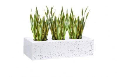 Lurna Planter Box+Plant_IMLUPBWT